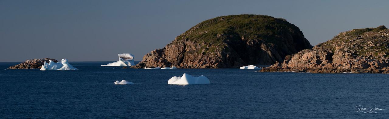 Icebergs in Little Harbour