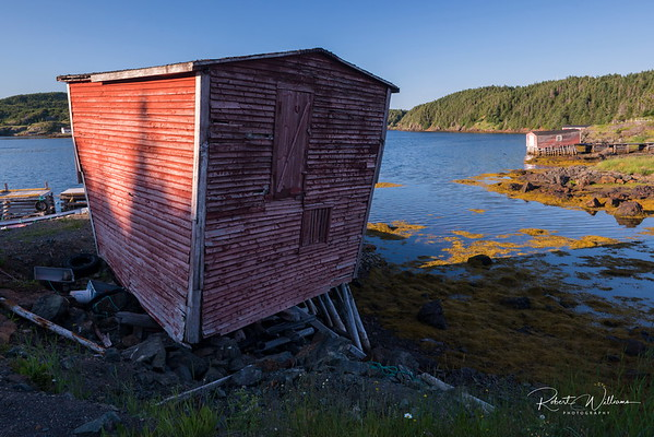 Fishing stores in Herring Neck, Newfoundland