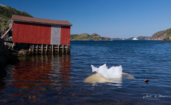 Small Iceberg in Merritt's Harbour, Newfoundland
