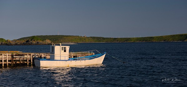 Fishing Boat in Ferryland