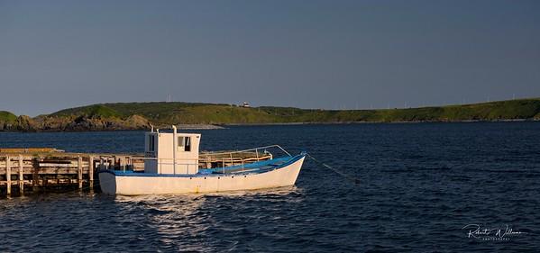 Fishing Boat in Ferryland