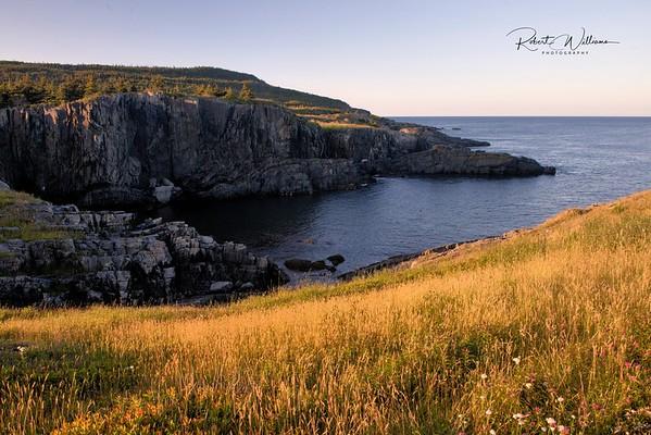 Ocean by Brigus South