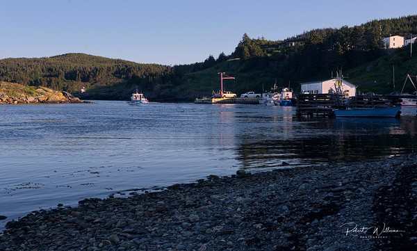 Harbour at Brigus South
