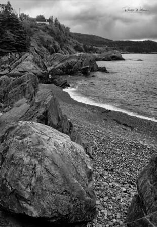 Shoreline at Island Cove