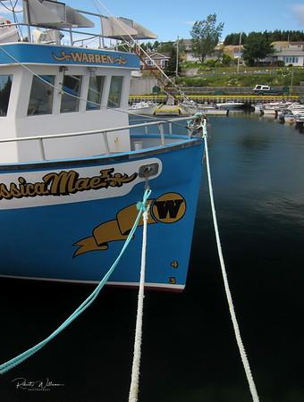 Boat at Dildo, Newfoundland