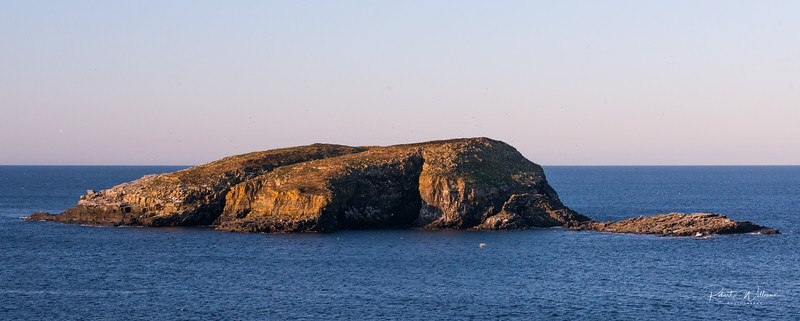 South Bird Island, between Elliston and Maberley, Newfoundland