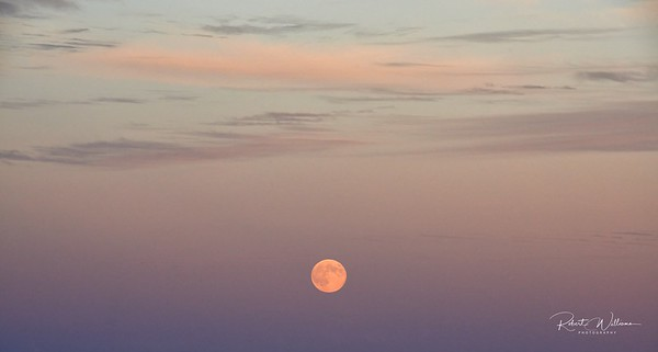 Full Moon Rising in Trinity