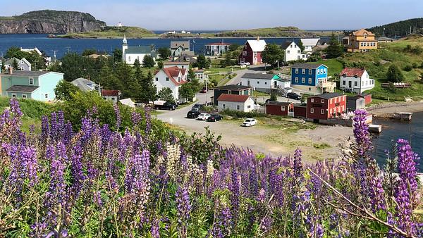Quaint seaside village in Newfoundland