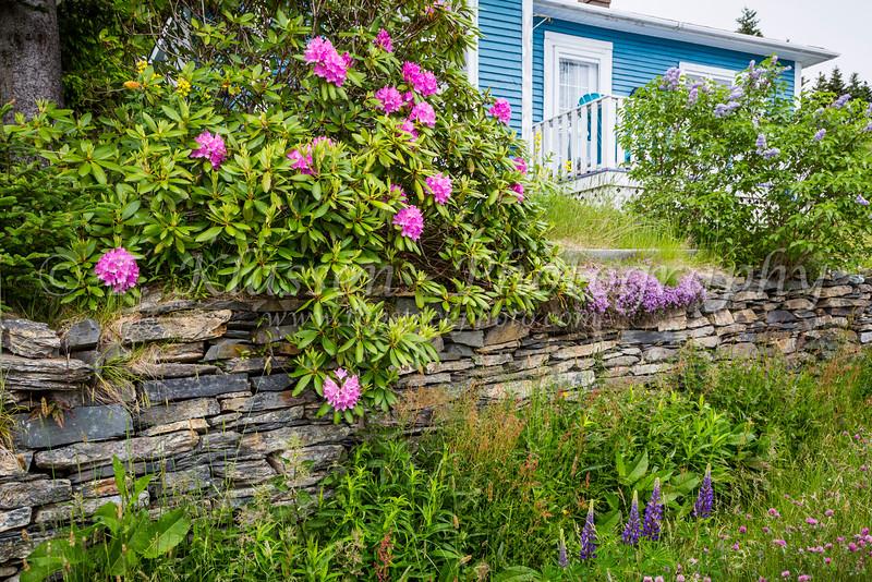 near Bay Roberts, Newfoundland and Labrador, Canada.