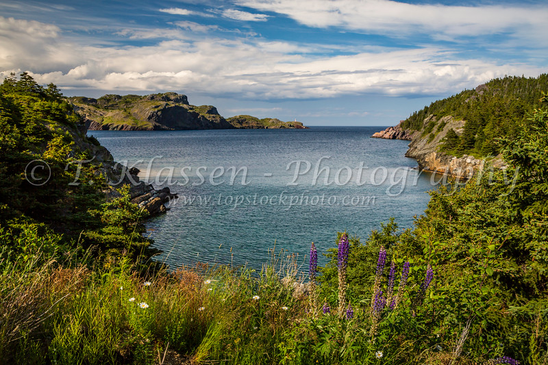The protected harbour of the picturesque fishing village of Brigus, Newfoundland and Labrador, Canada.