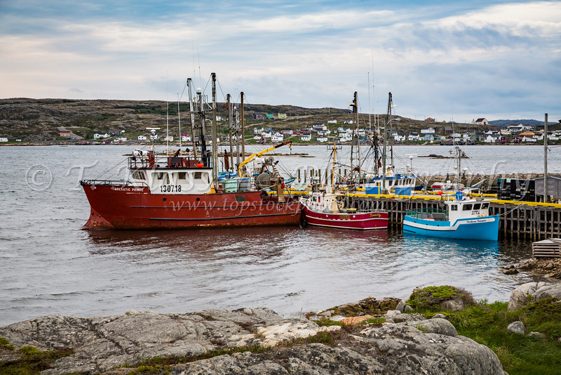 Fishing boats in the harbour at Joe Batt's Arm, Newfoundland and Labrador, Canada.