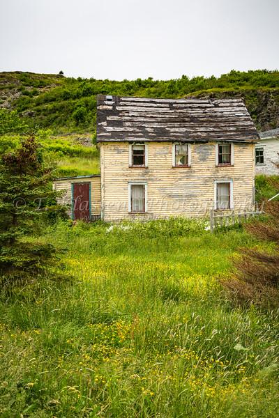 An abandoned salt box house at Hibbs Cove, Newfoundland and Labrador, Canada.