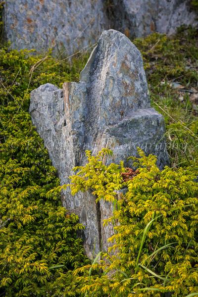 The Devil's Footprints near Keel's, Newfoundland and Labrador, Canada.
