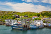 The village and coastline at Port de Grave, Newfoundland and Labrador, Canada.