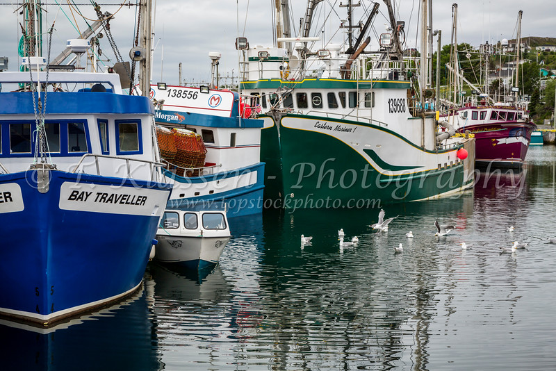 Closeup of fishing boats in the harbour at Port de Grave, Newfoundland and Labrador, Canada.