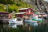 The fishing village of Quidi Vidi near St. John's, Newfoundland and Labrador, Canada.