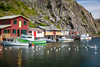 The fishing village of Quidi Vidi near St. John's, Newfoundland and Labrador, Canada.