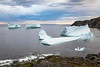 Icebergs off Fisherman's Point in St. Anthony, Newfoundland and Labrador, Canada.