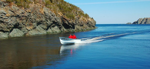 Returning home, Trout River, Newfoundland