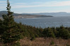 Rocky Harbour from Lobster Cove Head