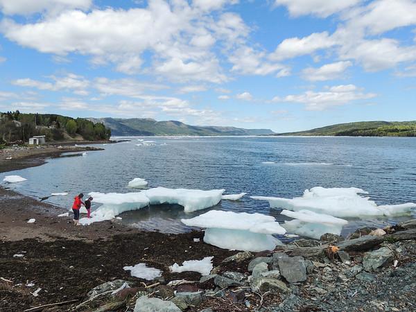 Icebergs 2014 (Hers)