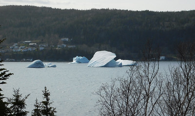 Bergs taken from the other side of the harbour, looking totally different