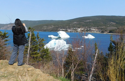 Same three bergs from higher up the road