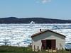 The same iceberg as we left Jackson's Cove