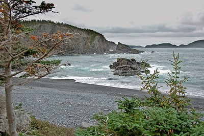 Ocean View Campground, Leading Tickles