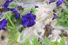 Fibre and Flowers