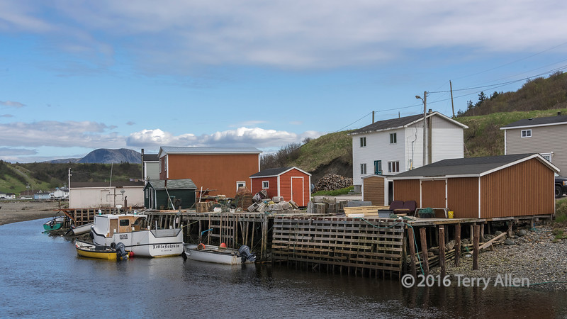 Looking inland up the river from the harbour, Trout River, Newfoundland