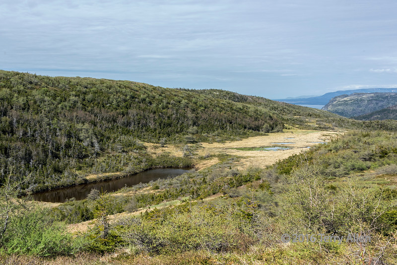 Green Garden trail