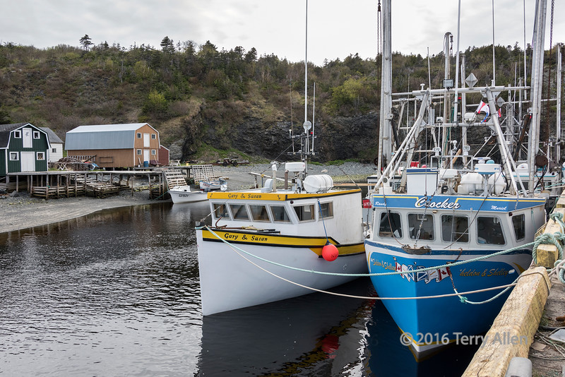 Fishing boats at the docks, Trout River, Newfoundland