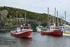 Seiners in the harbour at Trout River, Newfoundland