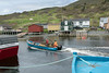 Lobster boat entering harbour with morning catch, Trout River, Newfoundland
