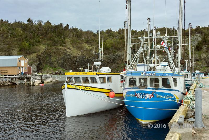 Fishing boats at the wharf at Trout River, Newfoundland