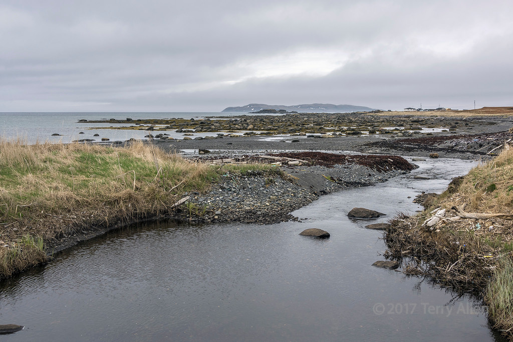 Viking landing site c1000AD at L'anse aux Meadows, Newfoundland, discovered in 1960