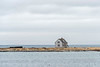 Radio beacon operator's house, Flowers Island (Fiora D'Aqua), Flowers Cove, Newfoundland