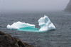 Small blue iceberg grounded in Lighthouse Cove, Quipon Island, Newfoundland