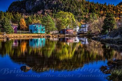 Autumn at Conception Harbour Newfoundland
