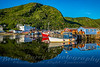 Reflections of Petty Harbour