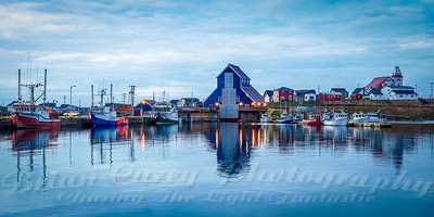 Bonavist' Harbour