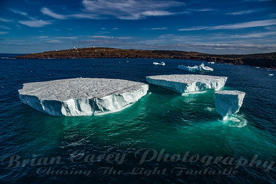 The Icebergs of Cape Spear