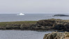 Bonavista Peninsula, iceberg with seagulls, Newfoundland
