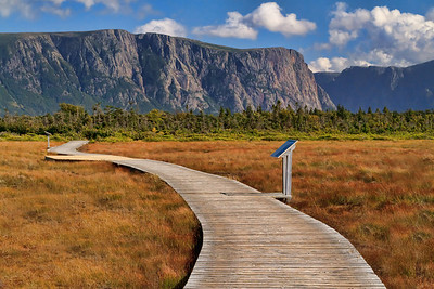 Boardwalk at Western Brook Pond