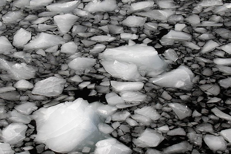Chunks of Ice Floating after Breaking Off of Iceberg