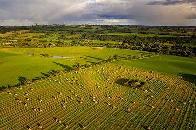 The Field ( Beside Newgrange)