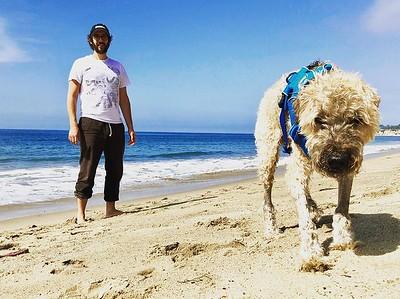 6/15/20 - joshgroban Verified Beach day. 📷: @adventuresindogtraining 2h