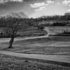 Celtic Manor 2010 Golf Course Views 04