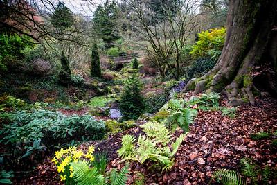 Autumn Colours in Belle Vue Park, Newport, Gwent, South Wales.
